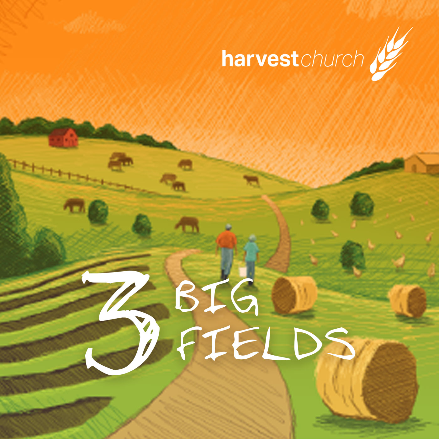 3 Big Fields